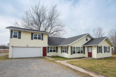 Bridgman Single Family Home For Sale: 9240 Jericho Road