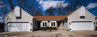 Niles Single Family Home For Sale: 1393-1391 Niles Buchanan Road