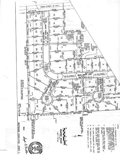 Residential Lots & Land For Sale: 1114 Water Tower Lane