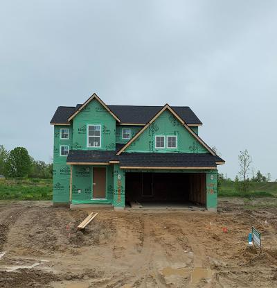 Jenison Single Family Home For Sale: 8855 Abbington Drive #Lot 299