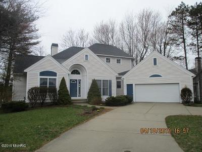 Ottawa County Single Family Home For Sale: 17911 Shallow Springs Court