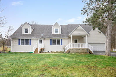 Newaygo County Single Family Home For Sale: 4833 Red Pine Drive