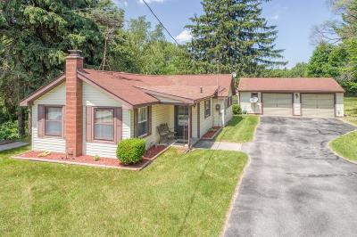 Mecosta County Single Family Home For Sale: 8770 Lakeview Boulevard