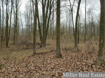 Barry County Residential Lots & Land For Sale: Parcel 2 Barber Road