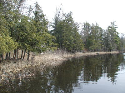 Oceana County Residential Lots & Land For Auction: 7022 S 128th Avenue