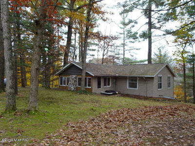 Newaygo Single Family Home For Sale: 9398 New River Drive