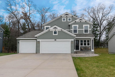 Ottawa County Single Family Home For Sale: 16884 Arbor Way Drive