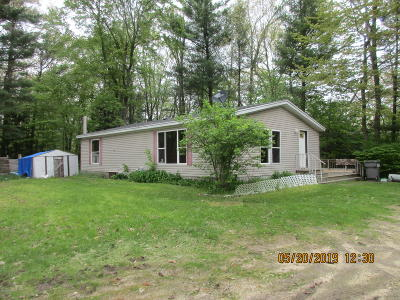 Newaygo County Single Family Home For Sale: 8169 W South River Rd