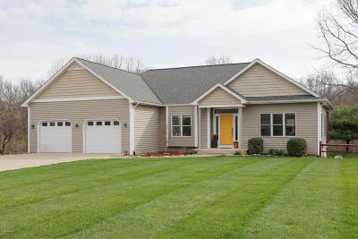 Kalamazoo Single Family Home For Sale: 7227 Owen Hills Drive