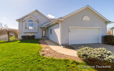 Hudsonville Single Family Home For Sale: 7829 Westside Drive