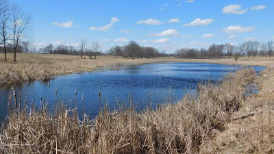 Isabella County Residential Lots & Land For Sale: 8608 W Vernon