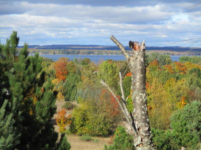 Benzie County, Charlevoix County, Clare County, Emmet County, Grand Traverse County, Kalkaska County, Lake County, Leelanau County, Manistee County, Mason County, Missaukee County, Osceola County, Roscommon County, Wexford County Residential Lots & Land For Sale: Potter Road