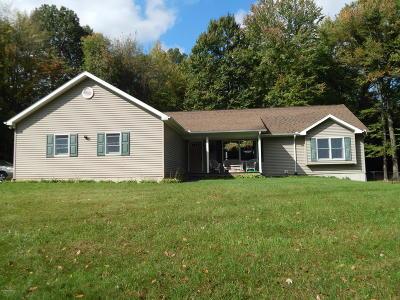 Berrien County, Branch County, Calhoun County, Cass County, Hillsdale County, Jackson County, Kalamazoo County, St. Joseph County, Van Buren County Single Family Home For Sale: 63020 Lake Street