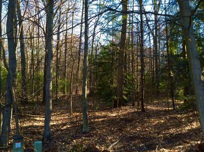 Grand Haven, Spring Lake, Ferrysburg Residential Lots & Land For Sale: 16965 Fox Chase Circle