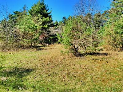 Residential Lots & Land For Sale: 51 Pleasant