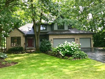 Kalamazoo Single Family Home For Sale: 5363 Four Seasons Drive