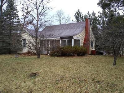 Idlewild Single Family Home For Sale: 343 E Dubois