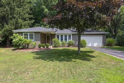 Harbert, Lakeside, New Buffalo, Sawyer, Three Oaks, Union Pier Single Family Home For Sale: 6713 Parkway Drive