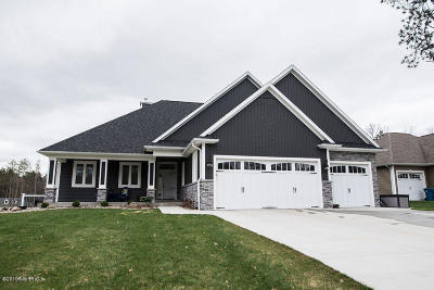 Kalamazoo Single Family Home For Sale: 1465 Forest View Drive