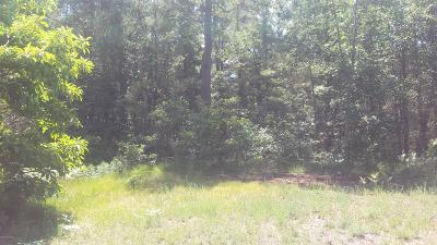 Residential Lots & Land For Sale: Lot 165 Danc