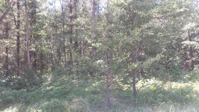 Residential Lots & Land For Sale: Lot 166 Danc