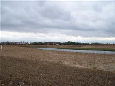 Edwardsburg Residential Lots & Land For Sale: 7 Caroline Court