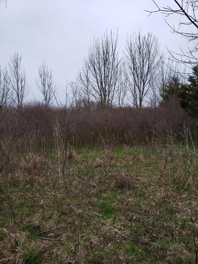 Berrien County Residential Lots & Land For Sale: 5310 E Britain
