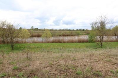 Edwardsburg Residential Lots & Land For Sale: 11 Ashley Road