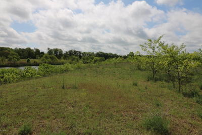 Edwardsburg Residential Lots & Land For Sale: 20 Ashley Road