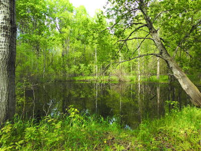 Missaukee County Residential Lots & Land For Sale: 40 Acres 9 Mile Rd