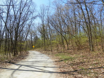 Bridgman Residential Lots & Land For Sale: Wildwood Drive