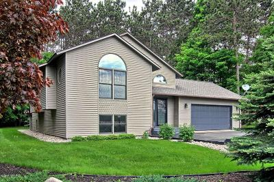 Thompsonville Single Family Home For Sale: 15228 N Manistee County Line Road