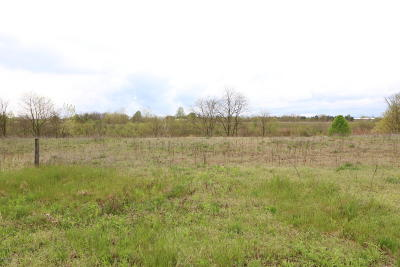 Edwardsburg Residential Lots & Land For Sale: 29 Tiffany Drive