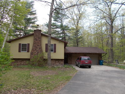 Big Rapids Single Family Home For Sale: 14655 Wigwam Lane