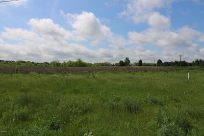 Edwardsburg Residential Lots & Land For Sale: 38 Tiffany Drive