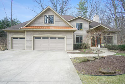 Holland, West Olive Single Family Home For Sale: 17237 College Avenue