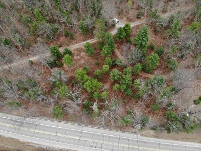 Oceana County Residential Lots & Land For Sale: Us 31