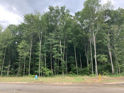 Hudsonville Residential Lots & Land For Sale: 8056 Redfield Court