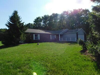 Kalamazoo Single Family Home For Sale: 7483 W Q Avenue