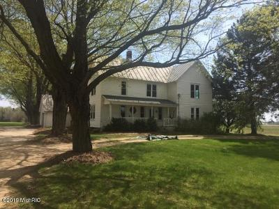 Howard City Single Family Home For Sale: 18735 Waterwheel Road