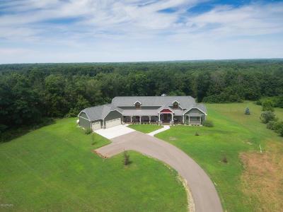Berrien County, Branch County, Calhoun County, Cass County, Hillsdale County, Jackson County, Kalamazoo County, St. Joseph County, Van Buren County Single Family Home For Sale: 49244 38th Avenue