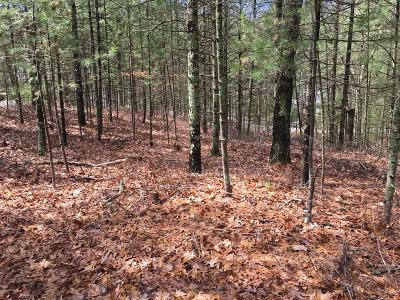 Oceana County Residential Lots & Land For Sale: V/L 18, 19, & 20