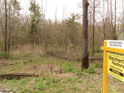 Allegan Residential Lots & Land For Sale: 143 Summit Drive