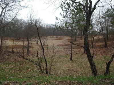 Oceana County Residential Lots & Land For Sale: 7300 S 200th Avenue
