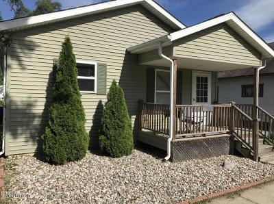 Benton Harbor Single Family Home For Sale: 251 Cornelia Street