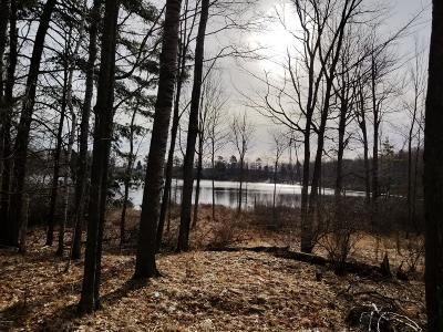 Evart Residential Lots & Land For Sale: Wildwood Road