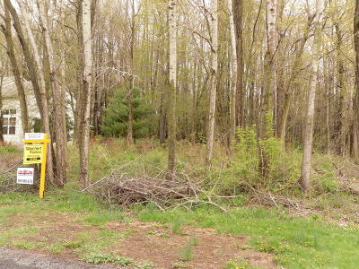 Allegan Residential Lots & Land For Sale: 158 Summit Drive