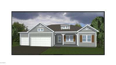 Hudsonville Single Family Home For Sale