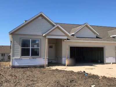 Zeeland Condo/Townhouse For Sale: 10114 Prairie Grass Court #46