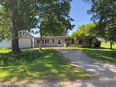 Kaleva Single Family Home For Sale: 8603 Lyman Road